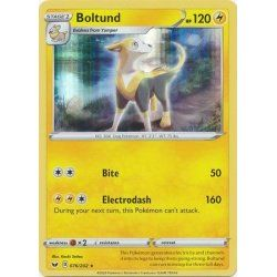 Boltund - 076/202 - Rare Holo