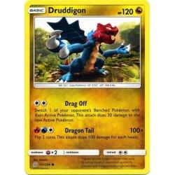 Druddigon - 157/236 - Common